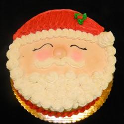Santa Cake #6
